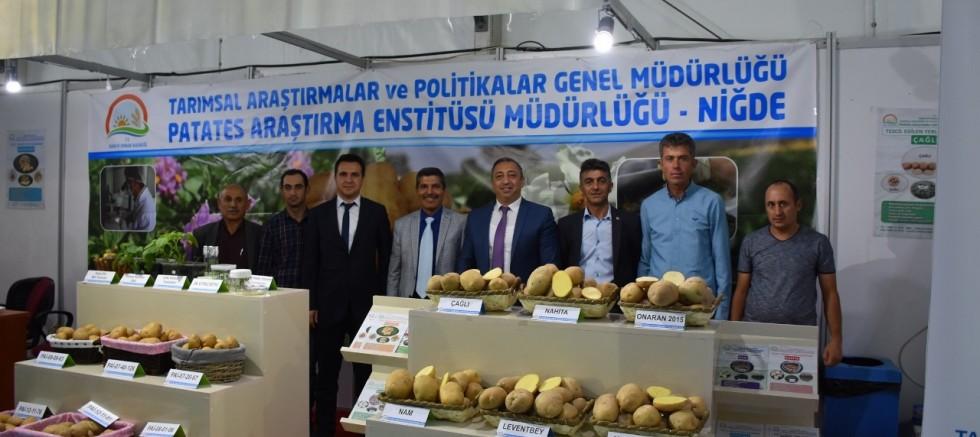 Yerli ve Milli Patates Çeşitlerine Vatandaştan Yoğun İlgi